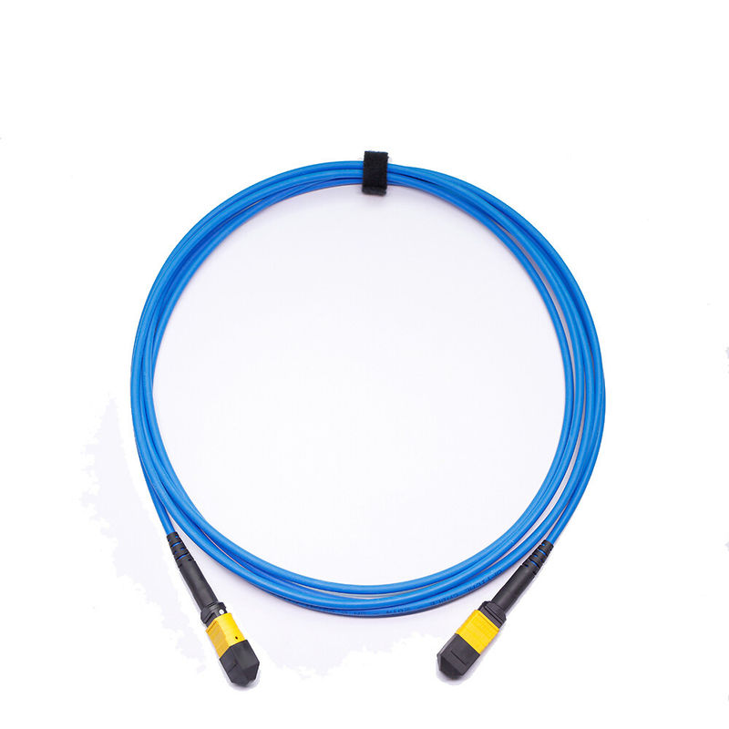 Low insertion loss 24 core MTP Mpo armored LSZH Material Fiber Optic Patch Cord 3meters